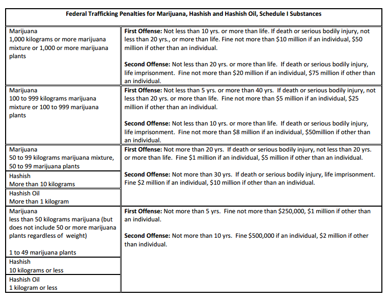 Marijuana trafficking penalties